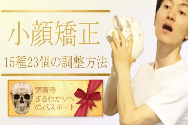 、エステの資格スクールセミナー【ディプロマ発行可能】東京、千葉、茨城、つくば
