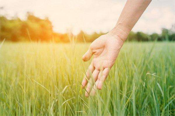 スウェディッシュマッサージの効果、リラクゼーションを促し、不安、うつ、ストレスを緩和する。