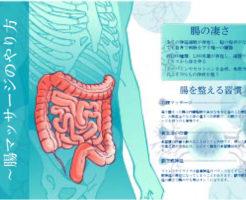 腸(お腹)マッサージのやり方